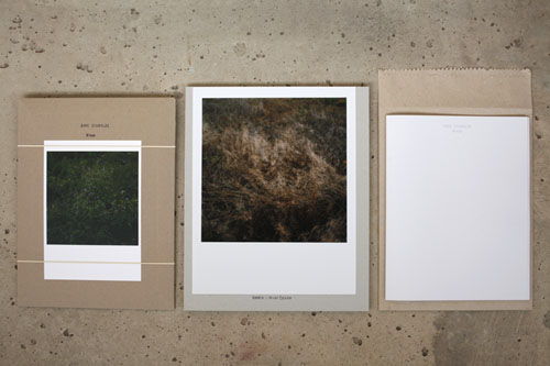 Wiese - the Special Limited Edition, includes an analogue Color Print