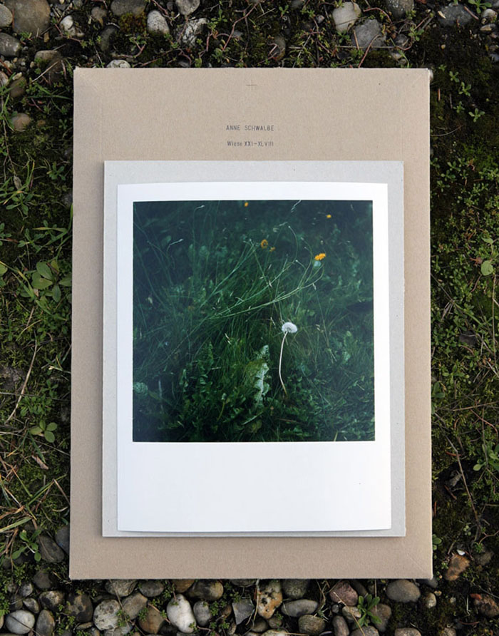 The Special Edition: A print of Wiese XLI + a book.  - All rights reserved. Copyright: Anne Schwalbe